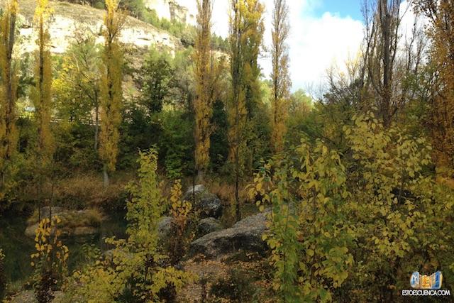 otoño en Cuenca-1 copia