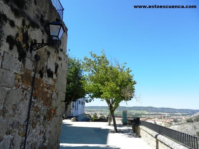que visitar en Cuenca-rutas por Cuenca-arbolillo